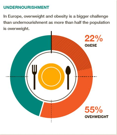 Fast food leads to obesity essay
