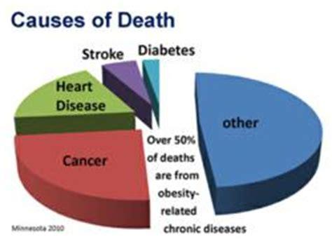 Cause and Effect: Obesity Writefixcom